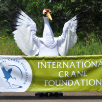 ICF Banner and Hope.lower res.jpg