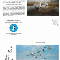 ICF first brochure.pdf
