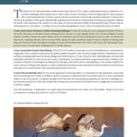 13Annual Report_print.pdf