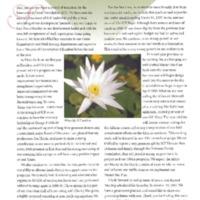 2006.Annual Report.pdf